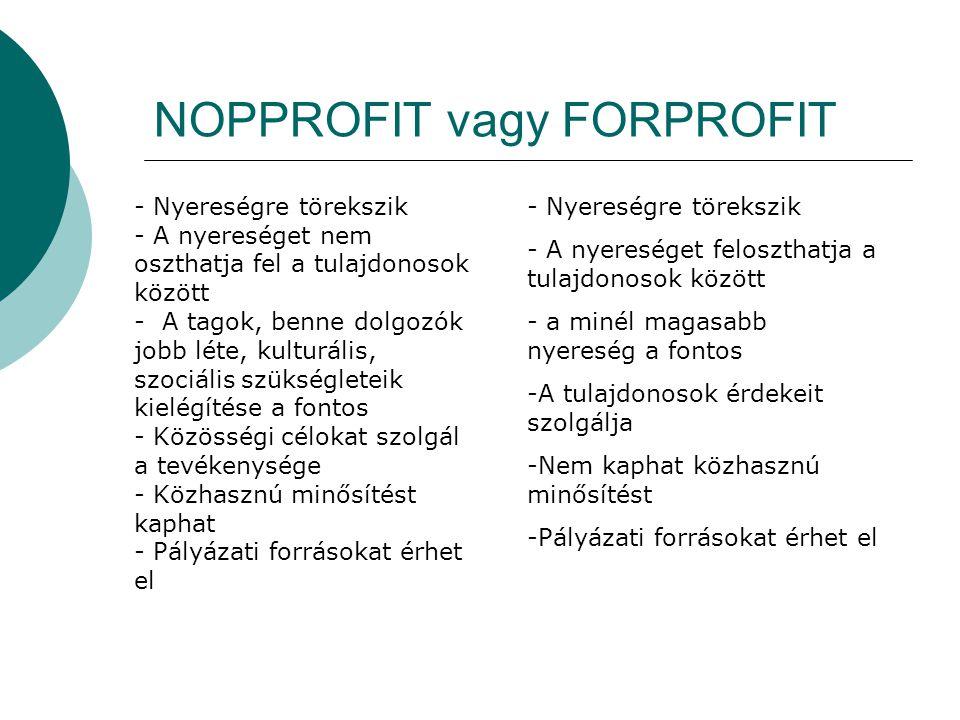 NOPPROFIT vagy FORPROFIT - Nyereségre törekszik - A nyereséget feloszthatja a tulajdonosok között - a minél magasabb nyereség a fontos -A tulajdonosok