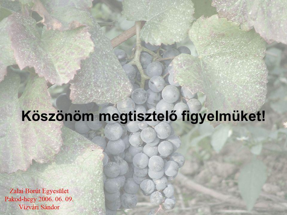 Európai Uniós Szabályozások •Az EU 1999 –ben megreformálta a szőlészeti – borászati szabályozást ezt az 1493/1999/EK rendeletben foglalták össze. •Eze