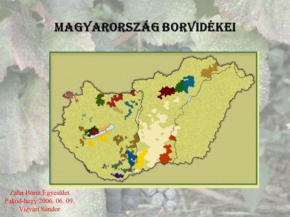 Sz ő l ő és bortermelés Történelmi és gazdasági jelent ő sége •Magyarország mindig Európa tradicionális bortermelő országa volt, hiszen honfoglaló őse