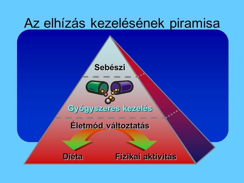 Az elhízás kezelésének piramisa Diéta Fizikai aktivitás Életmód változtatás Gyógyszeres kezelés Sebészi