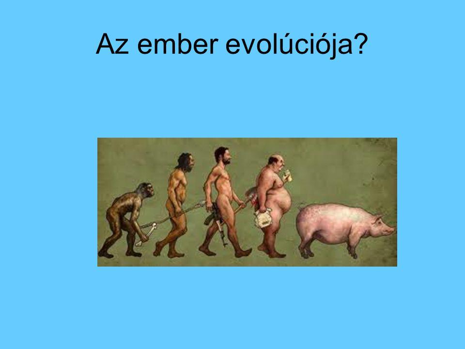 Az ember evolúciója?