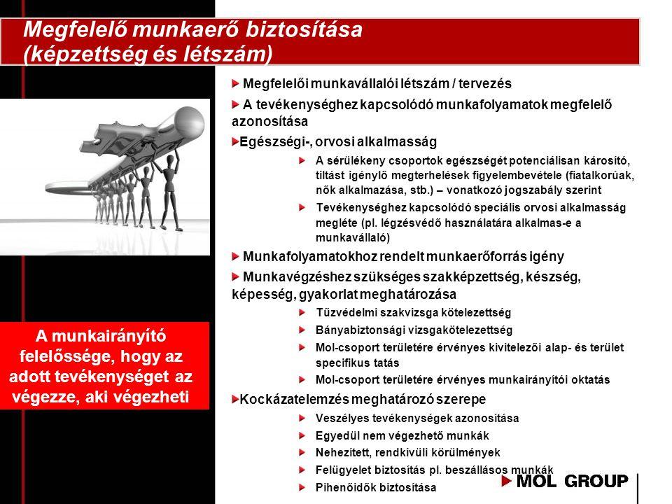 Megfelelői munkavállalói létszám / tervezés A tevékenységhez kapcsolódó munkafolyamatok megfelelő azonosítása Egészségi-, orvosi alkalmasság A sérülék
