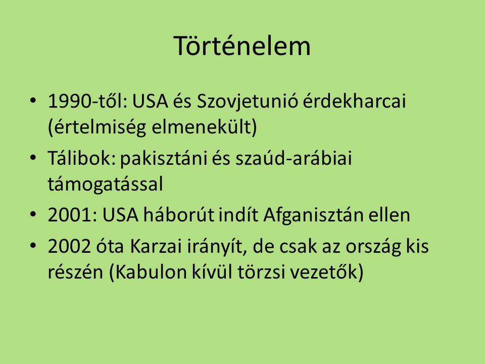 Történelem • 1990-től: USA és Szovjetunió érdekharcai (értelmiség elmenekült) • Tálibok: pakisztáni és szaúd-arábiai támogatással • 2001: USA háborút