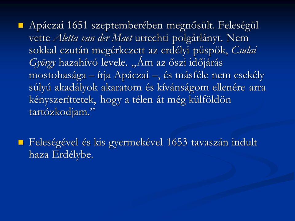  Hazatérte után a gyulafehérvári kollégiumba került, ahol a poétikai osztály vezetését bízták rá.