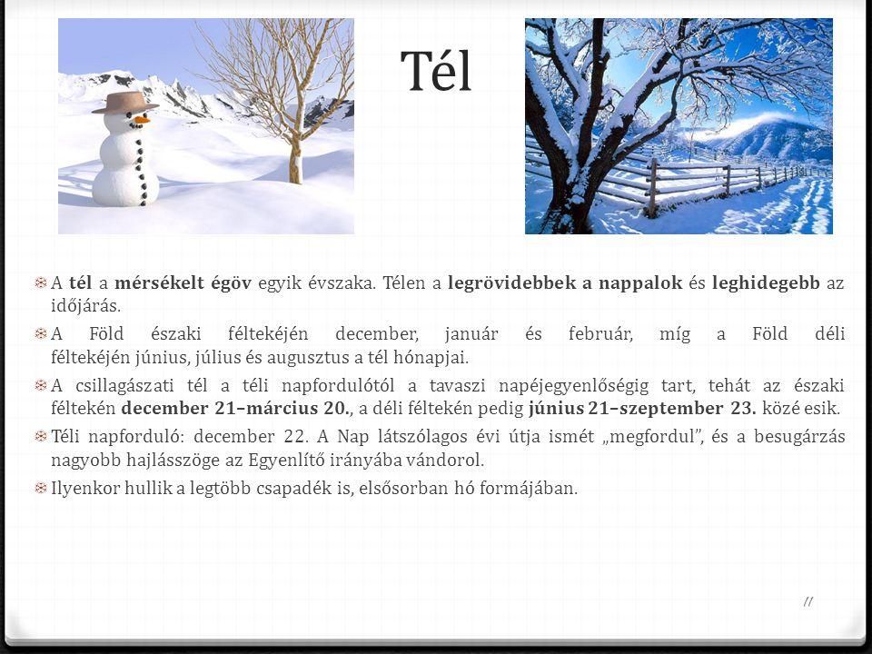 Tél  A tél a mérsékelt égöv egyik évszaka. Télen a legrövidebbek a nappalok és leghidegebb az időjárás.  A Föld északi féltekéjén december, január é