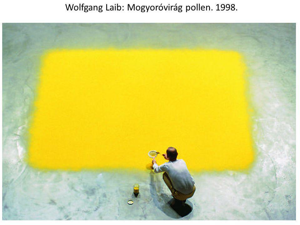 Wolfgang Laib: Mogyoróvirág pollen. 1998.