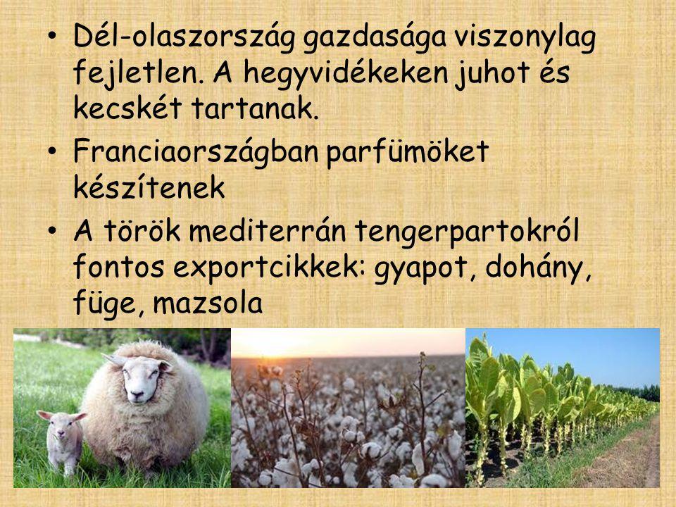 • Dél-olaszország gazdasága viszonylag fejletlen. A hegyvidékeken juhot és kecskét tartanak. • Franciaországban parfümöket készítenek • A török medite