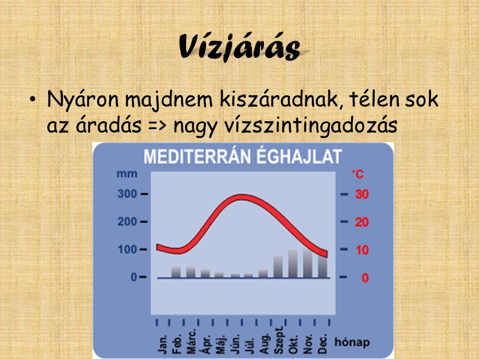 Vízjárás • Nyáron majdnem kiszáradnak, télen sok az áradás => nagy vízszintingadozás