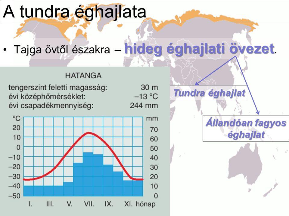 A tundra éghajlata hideg éghajlati övezet •Tajga övtől északra – hideg éghajlati övezet. Tundra éghajlat Állandóan fagyos éghajlat