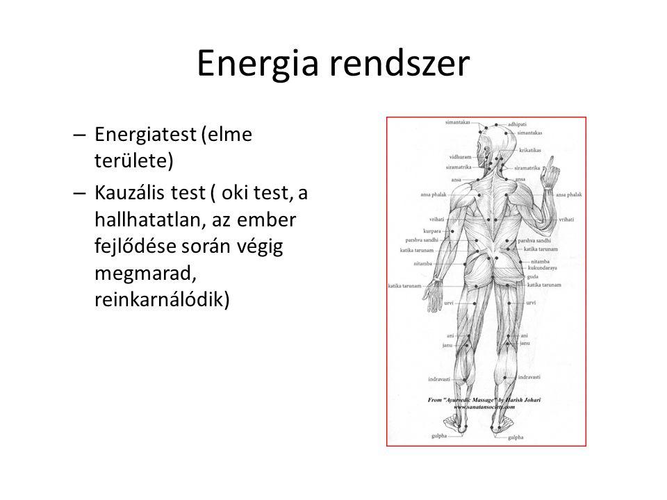 Energia rendszer • Energiatest: pránaburok, amely a táplálék és energiaburkot kapcsolja össze.