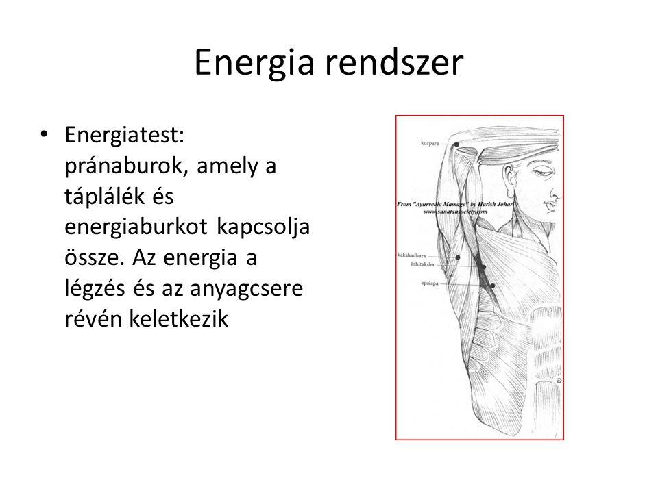 Energia rendszer • Energiatest: pránaburok, amely a táplálék és energiaburkot kapcsolja össze. Az energia a légzés és az anyagcsere révén keletkezik