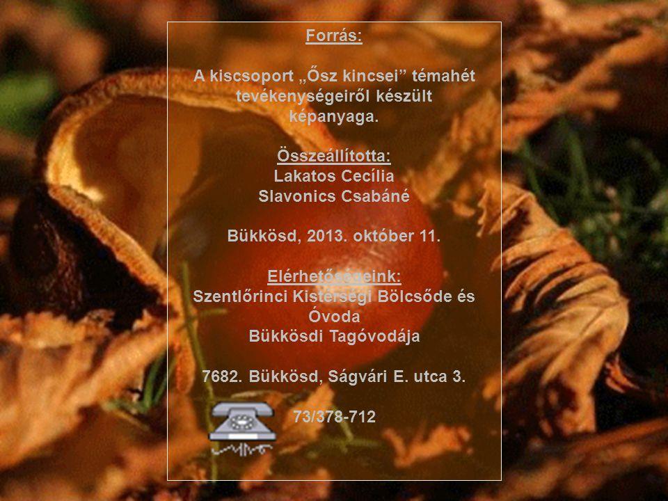 """Forrás: A kiscsoport """"Ősz kincsei"""" témahét tevékenységeiről készült képanyaga. Összeállította: Lakatos Cecília Slavonics Csabáné Bükkösd, 2013. októbe"""
