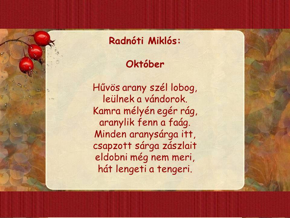 Radnóti Miklós: Október Hűvös arany szél lobog, leülnek a vándorok. Kamra mélyén egér rág, aranylik fenn a faág. Minden aranysárga itt, csapzott sárga