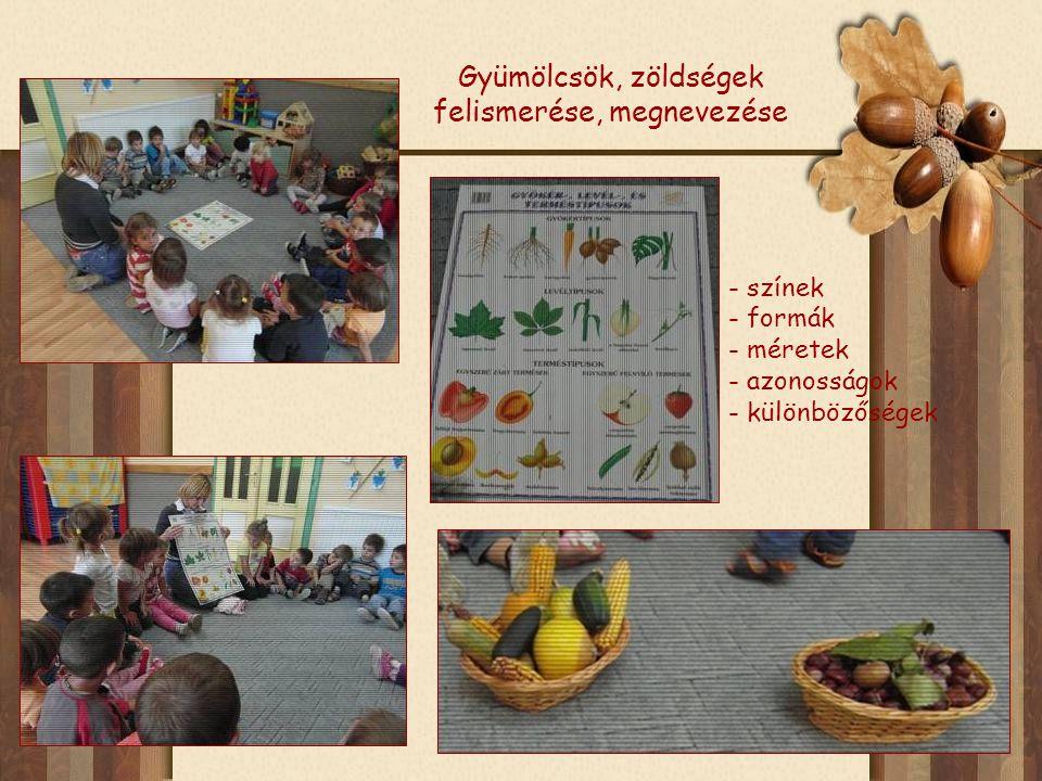 Gyümölcsök, zöldségek felismerése, megnevezése - színek - formák - méretek - azonosságok - különbözőségek