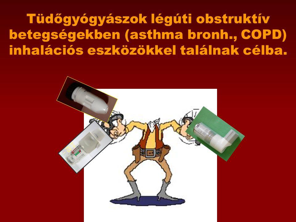 A fenntartó terápia gyógyszerei (kontrolláló szerek) Napi rendszerességgel, folyamatosan alkalmazott készítmények 1.