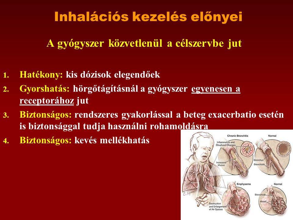 Szárazpor belégzők •Gyógyszertechnológiai kihívás volt: kisméretű gyógyszer- szemcsék, kis dózisú, pontos adagolásának megoldása.