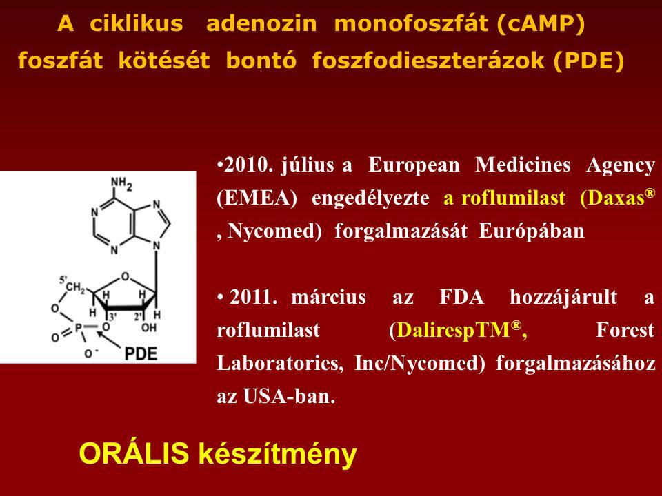 A ciklikus adenozin monofoszfát (cAMP) foszfát kötését bontó foszfodieszterázok (PDE) •2010.