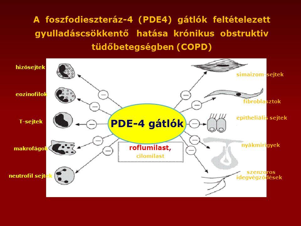 roflumilast, cilomilast hizósejtek eozinofilok T-sejtek makrofágok neutrofil sejtek simaizom-sejtek fibroblasztok epitheliális sejtek nyákmirigyek szenzoros idegvégződések A foszfodieszteráz-4 (PDE4) gátlók feltételezett gyulladáscsökkentő hatása krónikus obstruktiv tüdőbetegségben (COPD) PDE-4 gátlók