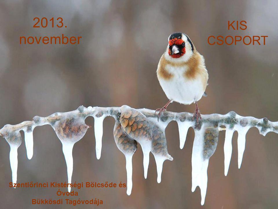 2013. november KIS CSOPORT Szentlőrinci Kistérségi Bölcsőde és Óvoda Bükkösdi Tagóvodája