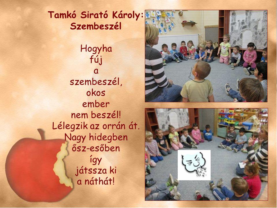 Tamkó Sirató Károly: Szembeszél Hogyha fúj a szembeszél, okos ember nem beszél! Lélegzik az orrán át. Nagy hidegben ősz-esőben így játssza ki a náthát