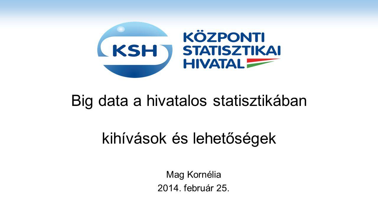 Big data a hivatalos statisztikában kihívások és lehetőségek Mag Kornélia 2014. február 25.