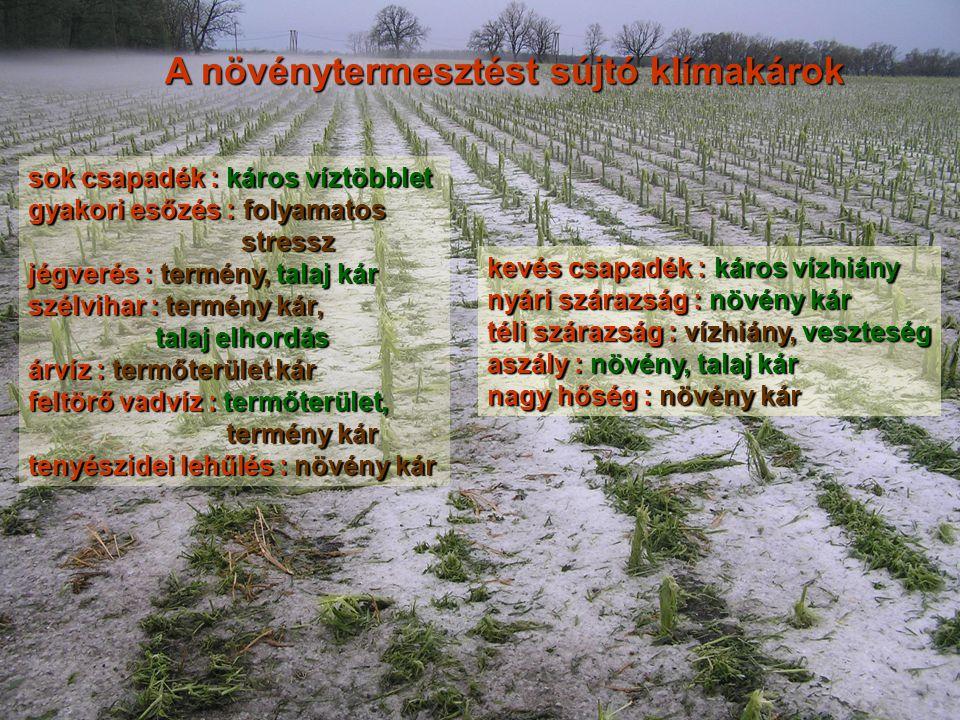 sok csapadék : káros víztöbblet gyakori esőzés : folyamatos stressz stressz jégverés : termény, talaj kár szélvihar : termény kár, talaj elhordás talaj elhordás árvíz : termőterület kár feltörő vadvíz : termőterület, termény kár termény kár tenyészidei lehűlés : növény kár A növénytermesztést sújtó klímakárok kevés csapadék : káros vízhiány nyári szárazság : növény kár téli szárazság : vízhiány, veszteség aszály : növény, talaj kár nagy hőség : növény kár