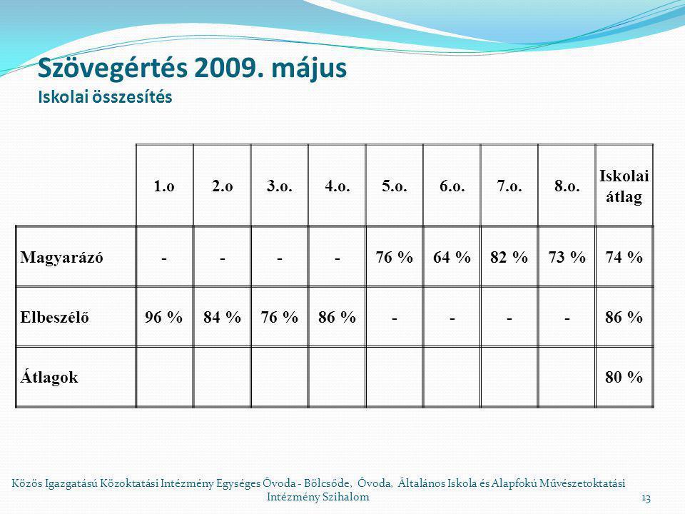 Szövegértés 2009.