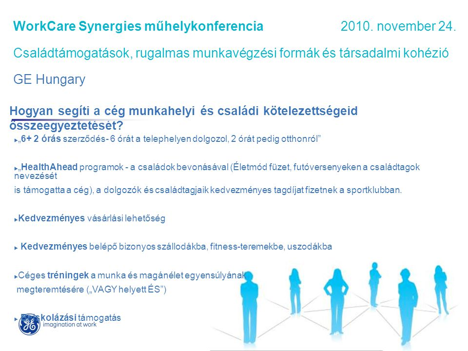 WorkCare Synergies műhelykonferencia 2010.november 24.