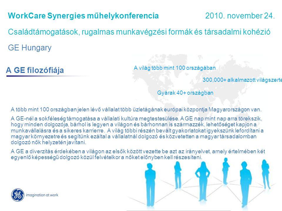 Vevői szükségletekre épülő és növekedést biztosító magyarországi üzletágak WorkCare Synergies műhelykonferencia 2010.