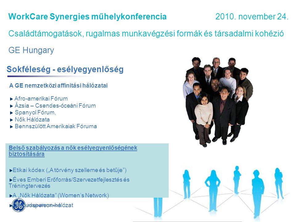 WorkCare Synergies műhelykonferencia 2010.november 24.