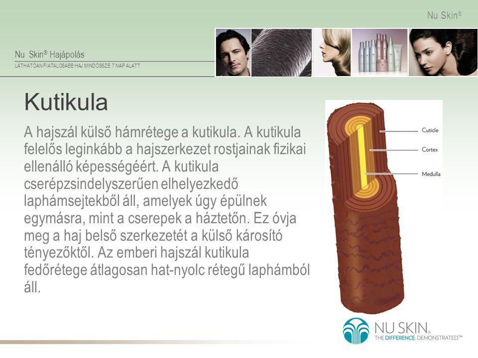 Nu Skin ® Hajápolás LÁTHATÓAN FIATALOSABB HAJ MINDÖSSZE 7 NAP ALATT Nu Skin ® Kutikula A hajszál külső hámrétege a kutikula. A kutikula felelős legink