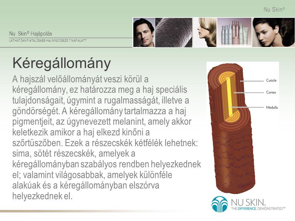 Nu Skin ® Hajápolás LÁTHATÓAN FIATALOSABB HAJ MINDÖSSZE 7 NAP ALATT Nu Skin ® Kéregállomány A hajszál velőállományát veszi körül a kéregállomány, ez h