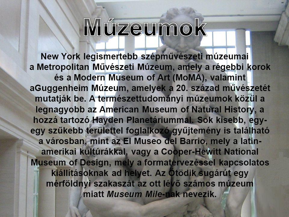 New York legismertebb szépművészeti múzeumai a Metropolitan Művészeti Múzeum, amely a régebbi korok és a Modern Museum of Art (MoMA), valamint aGuggenheim Múzeum, amelyek a 20.