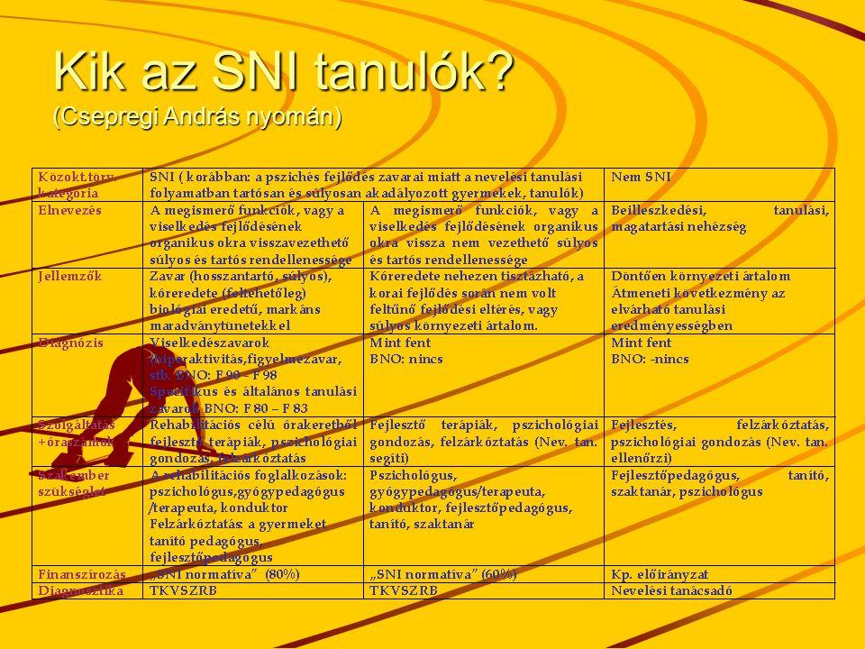 Kik az SNI tanulók? (Csepregi András nyomán)