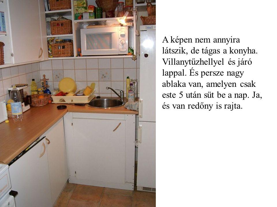 A képen nem annyira látszik, de tágas a konyha. Villanytűzhellyel és járó lappal.