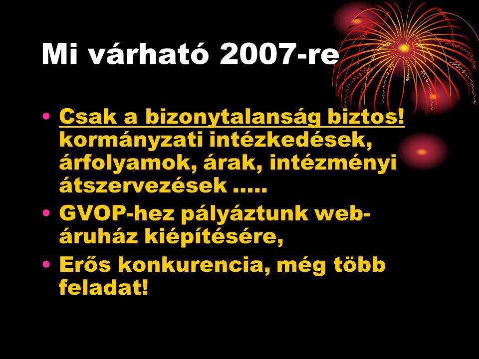 Mi várható 2007-re •Csak a bizonytalanság biztos! kormányzati intézkedések, árfolyamok, árak, intézményi átszervezések ….. •GVOP-hez pályáztunk web- á