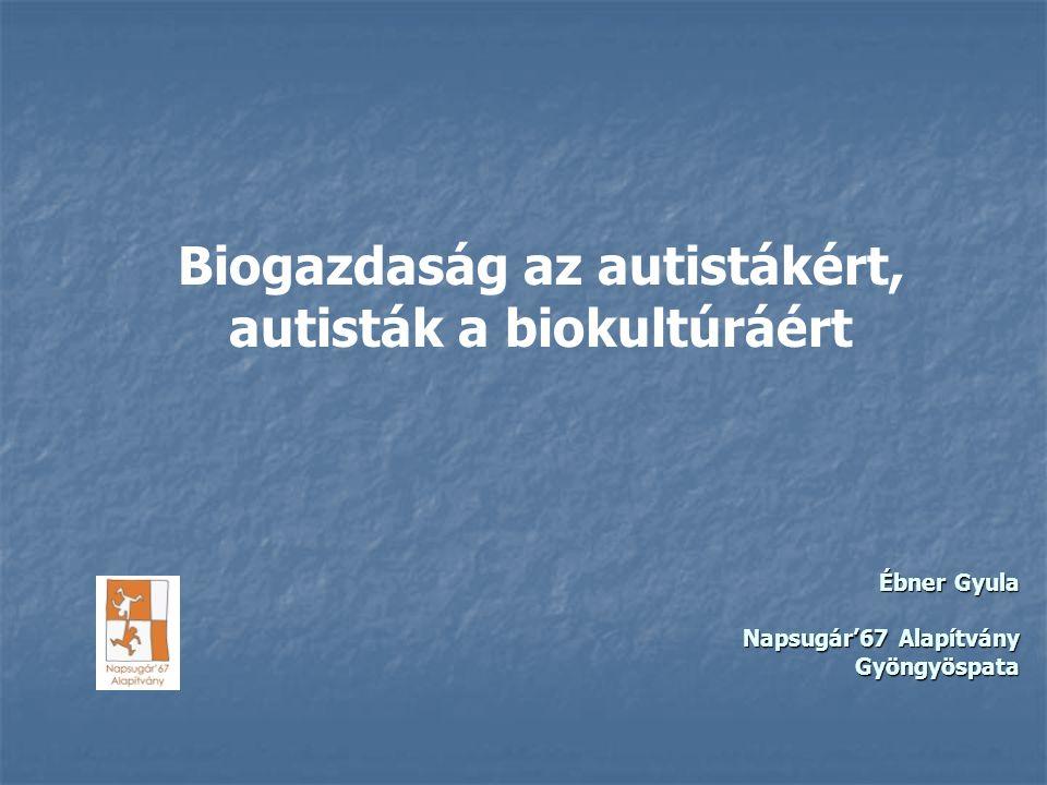 Ébner Gyula Napsugár'67 Alapítvány Gyöngyöspata Biogazdaság az autistákért, autisták a biokultúráért