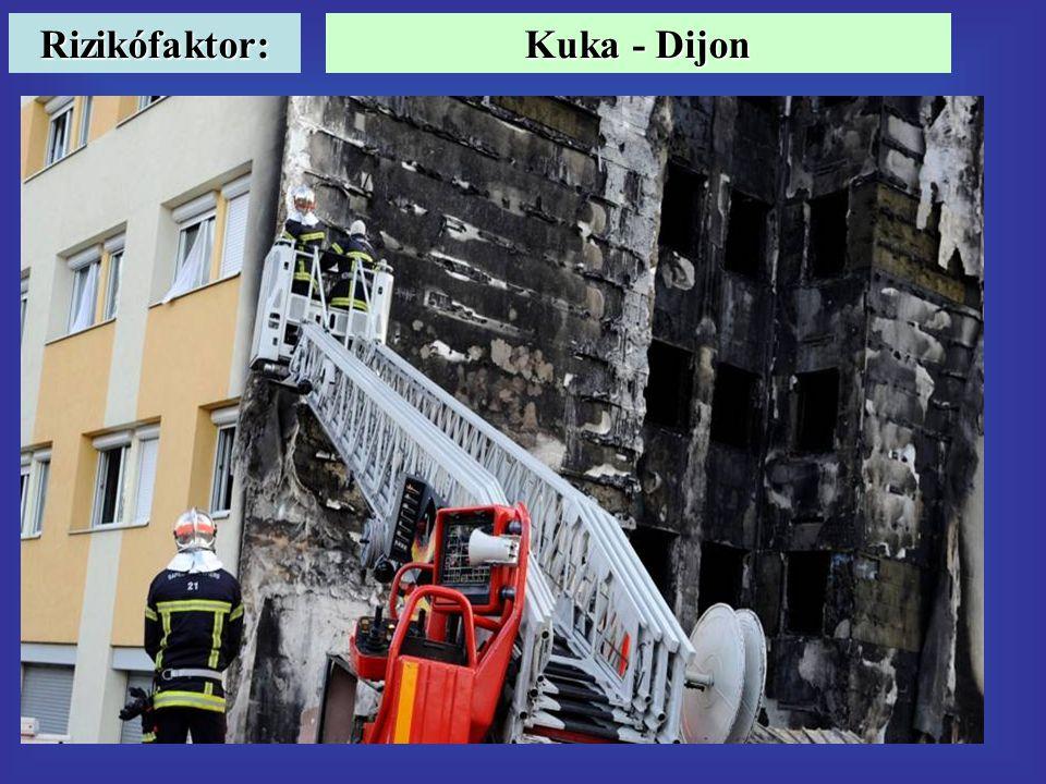 Rizikófaktor: Kuka - Dijon