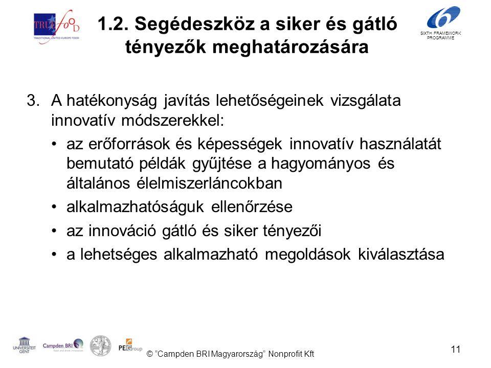 SIXTH FRAMEWORK PROGRAMME 3.A hatékonyság javítás lehetőségeinek vizsgálata innovatív módszerekkel: •az erőforrások és képességek innovatív használatát bemutató példák gyűjtése a hagyományos és általános élelmiszerláncokban •alkalmazhatóságuk ellenőrzése •az innováció gátló és siker tényezői •a lehetséges alkalmazható megoldások kiválasztása 11 © Campden BRI Magyarország Nonprofit Kft 1.2.