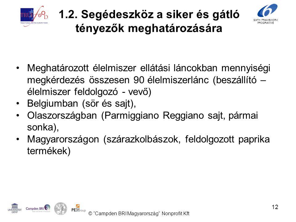 SIXTH FRAMEWORK PROGRAMME 12 •Meghatározott élelmiszer ellátási láncokban mennyiségi megkérdezés összesen 90 élelmiszerlánc (beszállító – élelmiszer feldolgozó - vevő) •Belgiumban (sör és sajt), •Olaszországban (Parmiggiano Reggiano sajt, pármai sonka), •Magyarországon (szárazkolbászok, feldolgozott paprika termékek) © Campden BRI Magyarország Nonprofit Kft 1.2.