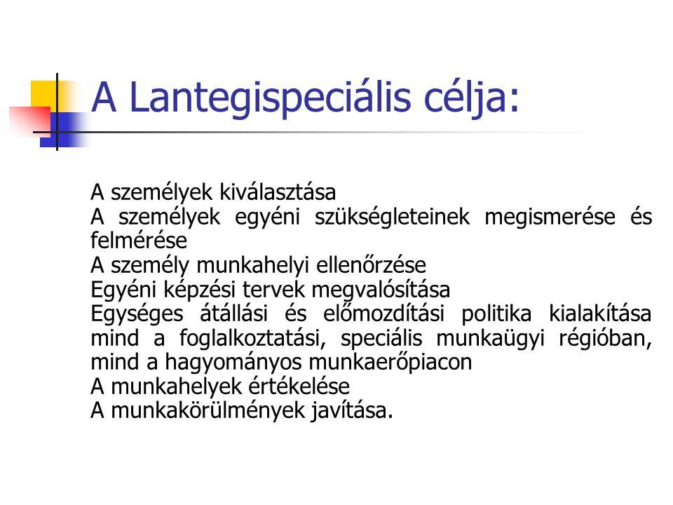 A Magyar adaptációs érdekek: - Egyéni erősségek kidomborítása - Személyre szabott segítségnyújtás - Adekvát munkahely keresése - Reális perspektíva - Ösztönzés - Karrierterv - Munkáltatók félelmeinek csökkentése - Visszacsatolás - Mentorálás - Fejlesztés - Jövőkép