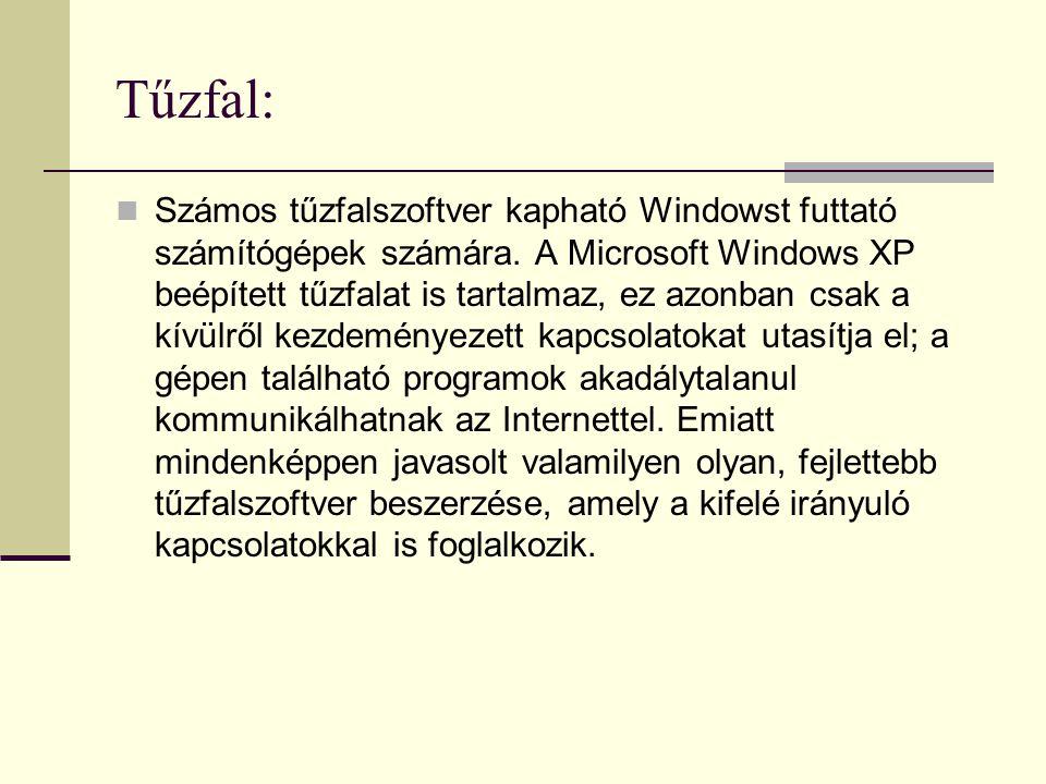 Tűzfal:  Számos tűzfalszoftver kapható Windowst futtató számítógépek számára. A Microsoft Windows XP beépített tűzfalat is tartalmaz, ez azonban csak