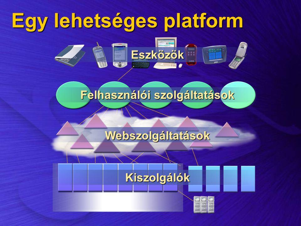 Egy lehetséges platform Kiszolgálók Webszolgáltatások Felhasználói szolgáltatások Eszközök