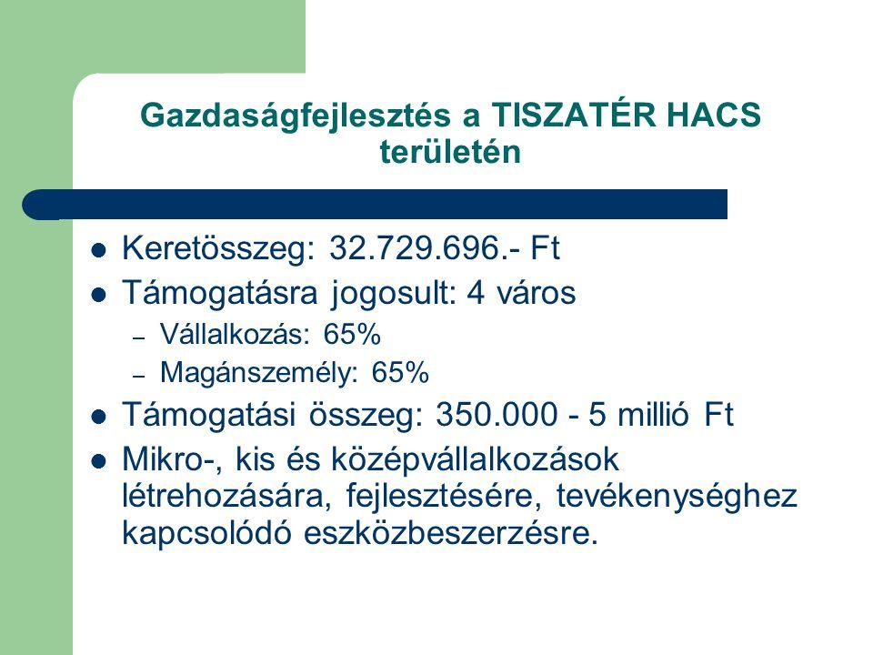 Gazdaságfejlesztés a TISZATÉR HACS területén  Keretösszeg: 32.729.696.- Ft  Támogatásra jogosult: 4 város – Vállalkozás: 65% – Magánszemély: 65%  Támogatási összeg: 350.000 - 5 millió Ft  Mikro-, kis és középvállalkozások létrehozására, fejlesztésére, tevékenységhez kapcsolódó eszközbeszerzésre.