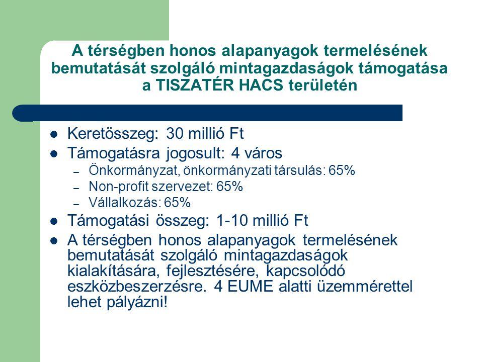 A térségben honos alapanyagok termelésének bemutatását szolgáló mintagazdaságok támogatása a TISZATÉR HACS területén  Keretösszeg: 30 millió Ft  Támogatásra jogosult: 4 város – Önkormányzat, önkormányzati társulás: 65% – Non-profit szervezet: 65% – Vállalkozás: 65%  Támogatási összeg: 1-10 millió Ft  A térségben honos alapanyagok termelésének bemutatását szolgáló mintagazdaságok kialakítására, fejlesztésére, kapcsolódó eszközbeszerzésre.