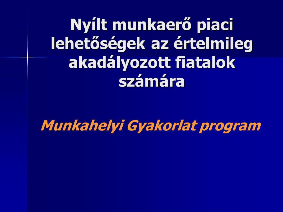 Nyílt munkaerő piaci lehetőségek az értelmileg akadályozott fiatalok számára Munkahelyi Gyakorlat program