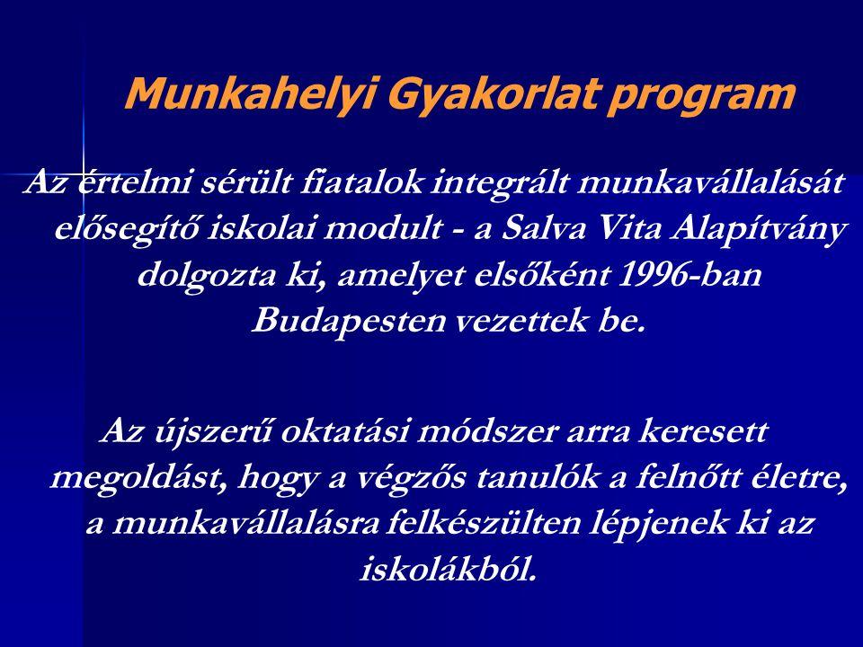 Az értelmi sérült fiatalok integrált munkavállalását elősegítő iskolai modult - a Salva Vita Alapítvány dolgozta ki, amelyet elsőként 1996-ban Budapes