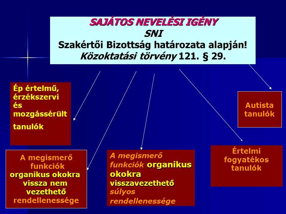 A SAJÁTOS NEVELÉSI IGÉNYŰ TANULÓK ARÁNYA 2004.-2006.