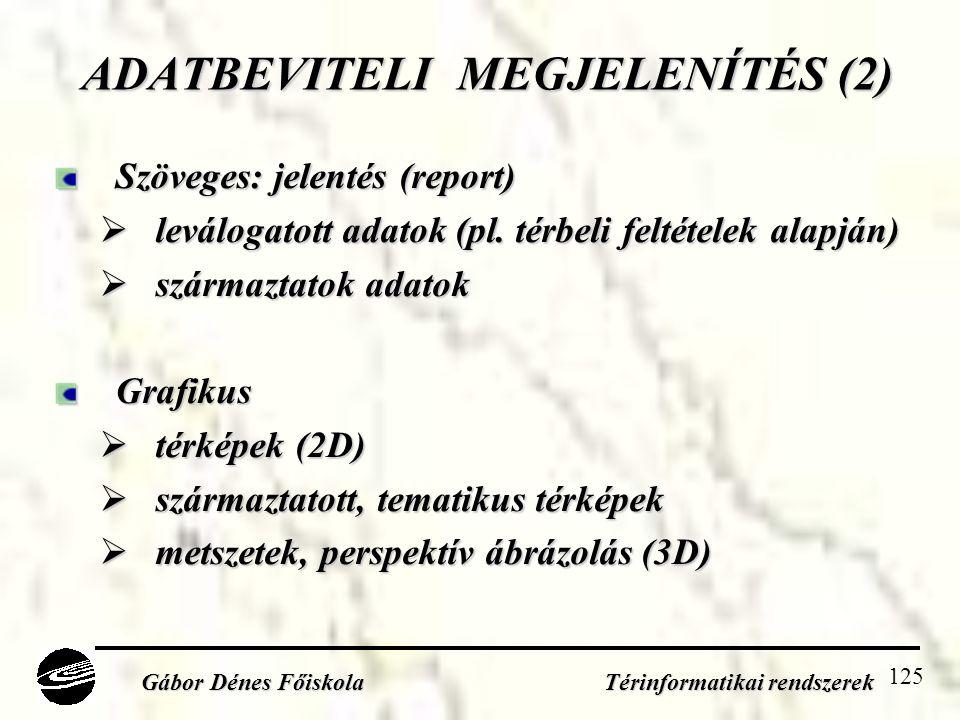 125 ADATBEVITELI MEGJELENÍTÉS (2) Szöveges: jelentés (report)  leválogatott adatok (pl.