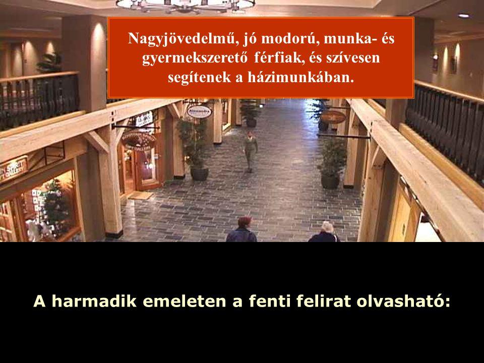 Ria Slides A harmadik emeleten a fenti felirat olvasható: Nagyjövedelmű, jó modorú, munka- és gyermekszerető férfiak, és szívesen segítenek a házimunkában..